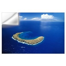 Hawaii, Maui, Aerial Overview Of Molokini Crater Wall Decal