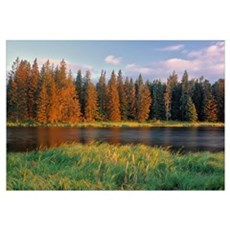 Whirlpool Lake, Riding Mountain National Park, Man Poster