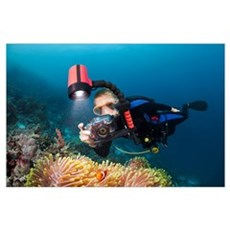 Indonesia, Wakatobi, Diver taking a picture of ane Poster