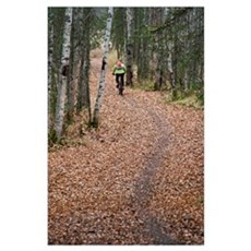 Woman Mountain Biking On A Leaf Covered Trail, Anc Poster