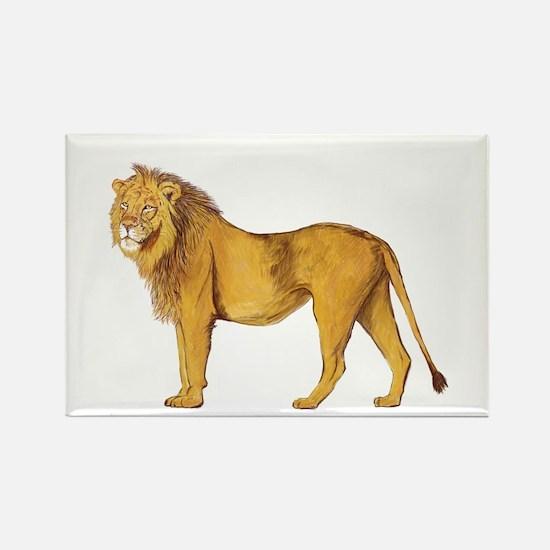 Lion Magnets