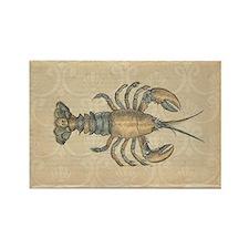 Vintage Maine Lobster scientific illustration Magn