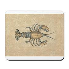 Vintage Maine Lobster scientific illustration Mous