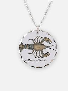 Vintage Maine Lobster scientific illustration Neck