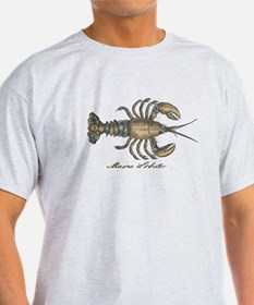 Vintage Maine Lobster scientific illustration T-Sh