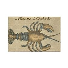 Vintage Maine Lobster scientific illustration Magn