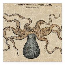 Octopus Kraken vintage scientific illustration Squ