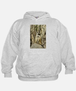 The Lookout Hoodie