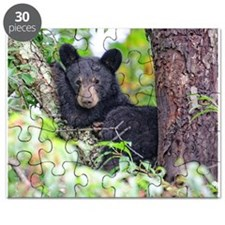Bear Cub relaxing in Tree Puzzle
