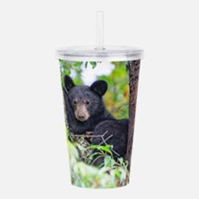 Bear Cub relaxing in Tree Acrylic Double-wall Tumb
