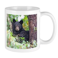 Bear Cub relaxing in Tree Mugs