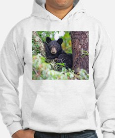 Bear Cub relaxing in Tree Hoodie