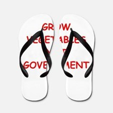 small government Flip Flops