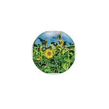 Sunflower Field Mini Button