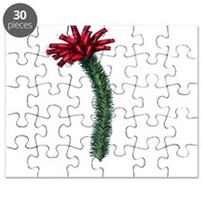 Cute Paxton Puzzle