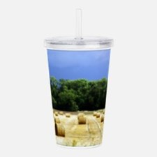 Unique Castles palaces Acrylic Double-wall Tumbler