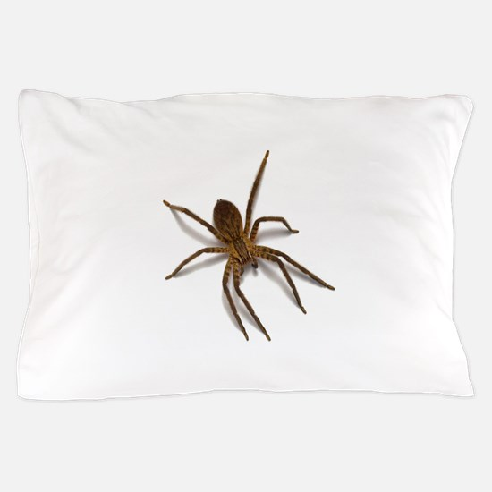 Funny Spider Pillow Case