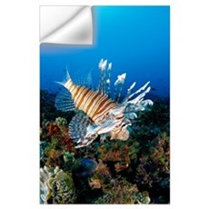 Fiji, Close-Up Side View Lionfish Over Coral Reef Wall Decal