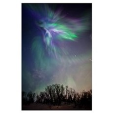 View Of The Aurora Borealis Over The Chugach Mount Poster