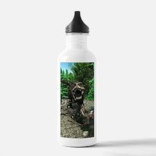 Tyrannosaurus Rex 4 Water Bottle