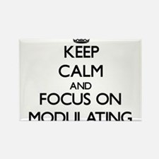 Keep Calm and focus on Modulating Magnets