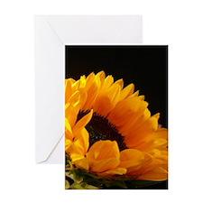 Beautiful Big Bold Sunflower Greeting Cards