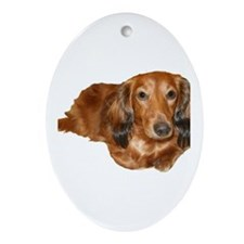 Long Hair Red Dachshund Oval Ornament
