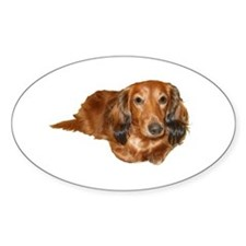Long Hair Red Dachshund Oval Decal