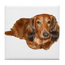 Long Hair Red Dachshund Tile Coaster