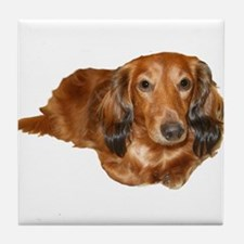 Long Hair Red Dachshund Tile Coaster