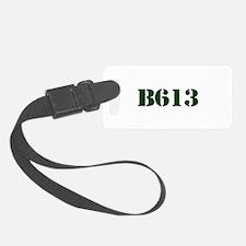 B613 Scandal Luggage Tag