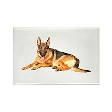 German Shepard Dog Rectangle Magnet