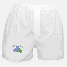 Rawr Dinosaur Boxer Shorts
