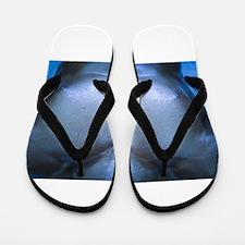 Unique Mr olympia Flip Flops