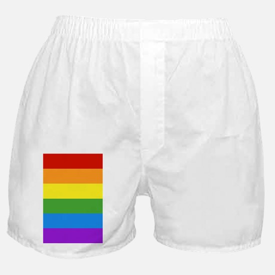 Cute Gay flag Boxer Shorts