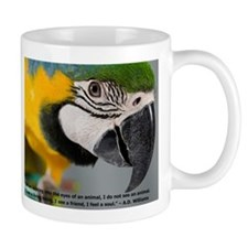 Blue and Gold Macaw with Quote Mugs