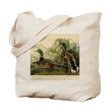 Audubon Mallard duck Bird Vintage Print Tote Bag
