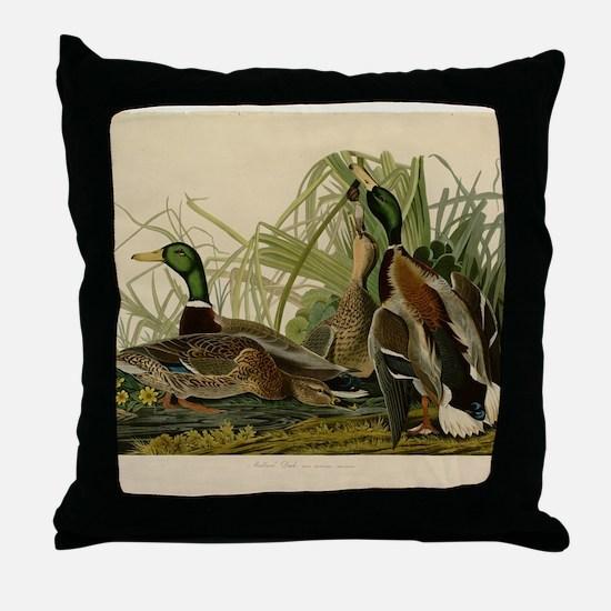 Audubon Mallard duck Bird Vintage Print Throw Pill