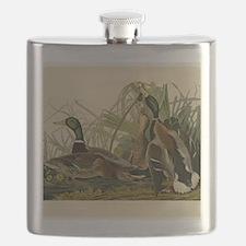 Audubon Mallard duck Bird Vintage Print Flask