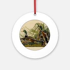 Audubon Mallard duck Bird Vintage Print Ornament (