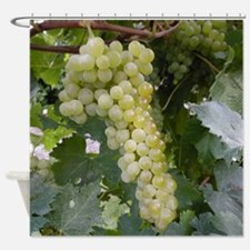 Unique Wine grapes Shower Curtain