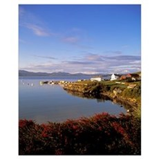 Rosguill Peninsula In Downings, County Donegal, Re Poster