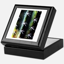 Cactus Needles Detail Keepsake Box