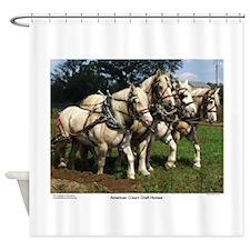 American Cream Draft Horse Team Shower Curtain