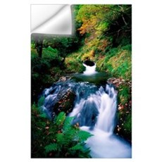 Waterfall In The Woods, Ireland Wall Decal