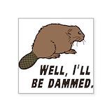 Beaver dam Square