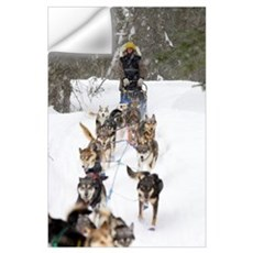 Bill Pinkham On The Trail In A Heavy Snowfall Wall Decal