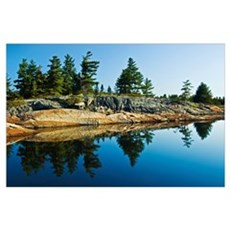 Tree's Reflection In Water, Georgian Bay, Ontario, Poster