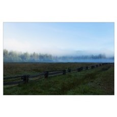 California, Elk Prairie in fog in Prairie Creek Re Poster
