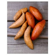 Traditional sweet potatoes on the left and yams on Poster